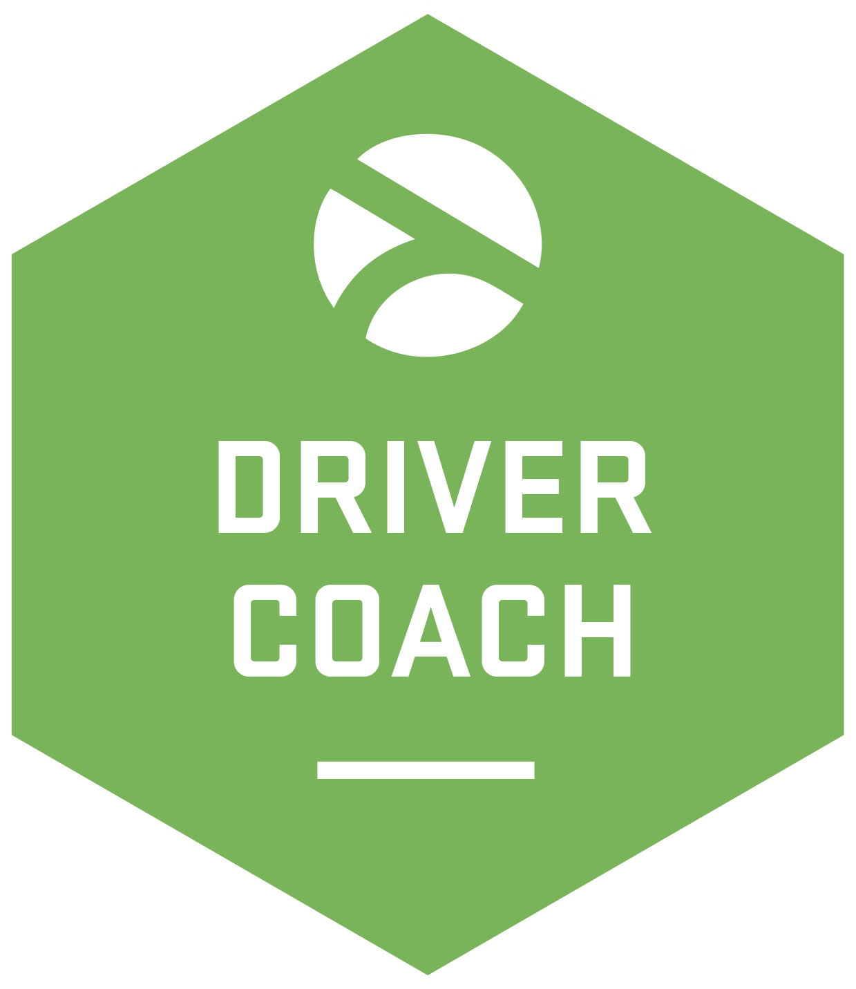 Driver Coach Driver Training